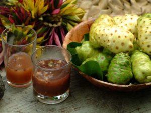 componentele-fructului-noni